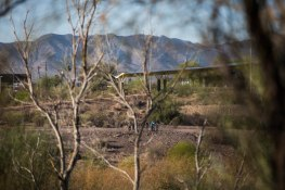 ASUNow - Museum of Walking - Rio Salado Habitat Restoration Area - 3/17/2018 Walkers look over from the conclusion of 'the walk' in the Rio Salado Habitat Restoration Area in Phoenix Saturday morning on March 17th, 2018. The Museum of Walking, an artist led educational resource center committed to the advancement of walking as an art practice. Photo by Deanna Dent/ASUNow