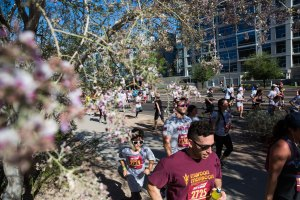 ASUNow - Pat Tillman Run 2018 - 4/21/2018 Runners make their way down Rio Salado and past iron wood flowers during the annual Pat Tillman Run in Tempe, Ariz. Friday morning April 21st, 2018. Approximately 30,000 runners competed in the 4.2 mile run/walk around Tempe. Photo by Deanna Dent/ASUNow